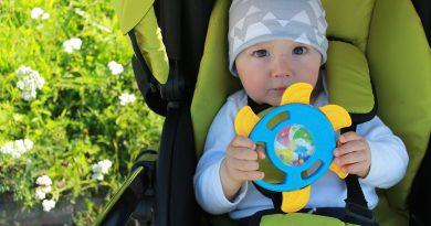 Baby Greifling Safari Sonne
