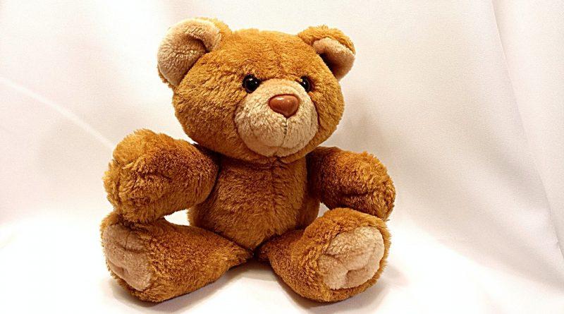 Baby Spielzeug Bär