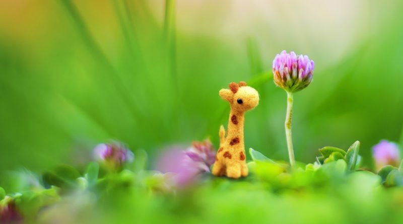 Spielzeug Blume Baby